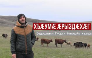 Хъæумæ æрыздæхæг – Бедошвили Гиорги Нигозайы хъæуæй