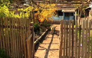 Общий дом аджарки и вернувшейся из Владикавказа осетинской семьи – Гвердзинети (VIDEO)