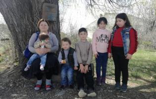 Остановка с навесом в селе Цицагианткари (Photo)